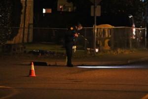 An officer looks for evidence along Beverly Lane.