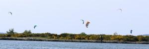 kite board 3