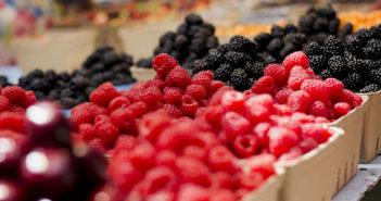 farmers' market, farmers' markets New Jersey, Jersey Fresh produce