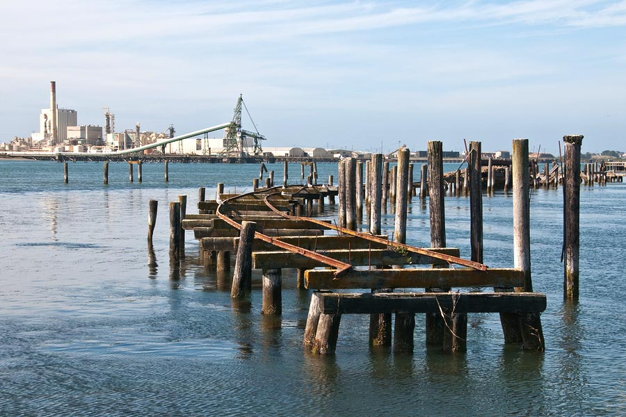 Travel Tips for Bay Area Travelers This Summer