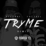 Fat Trel – Try Me (Freestyle).