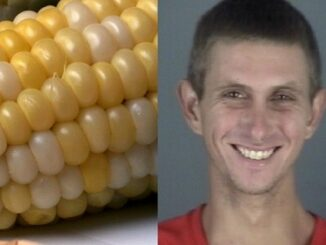 Florida Man Arrested For Beating His Mom With Corn Cob.