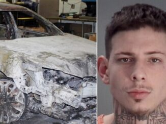 Florida Man Burns Guy Alive After Losing Card Game.