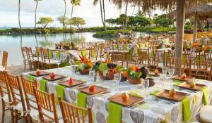 Displays of Aloha