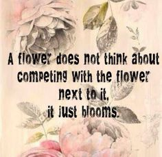 Believe & Bloom