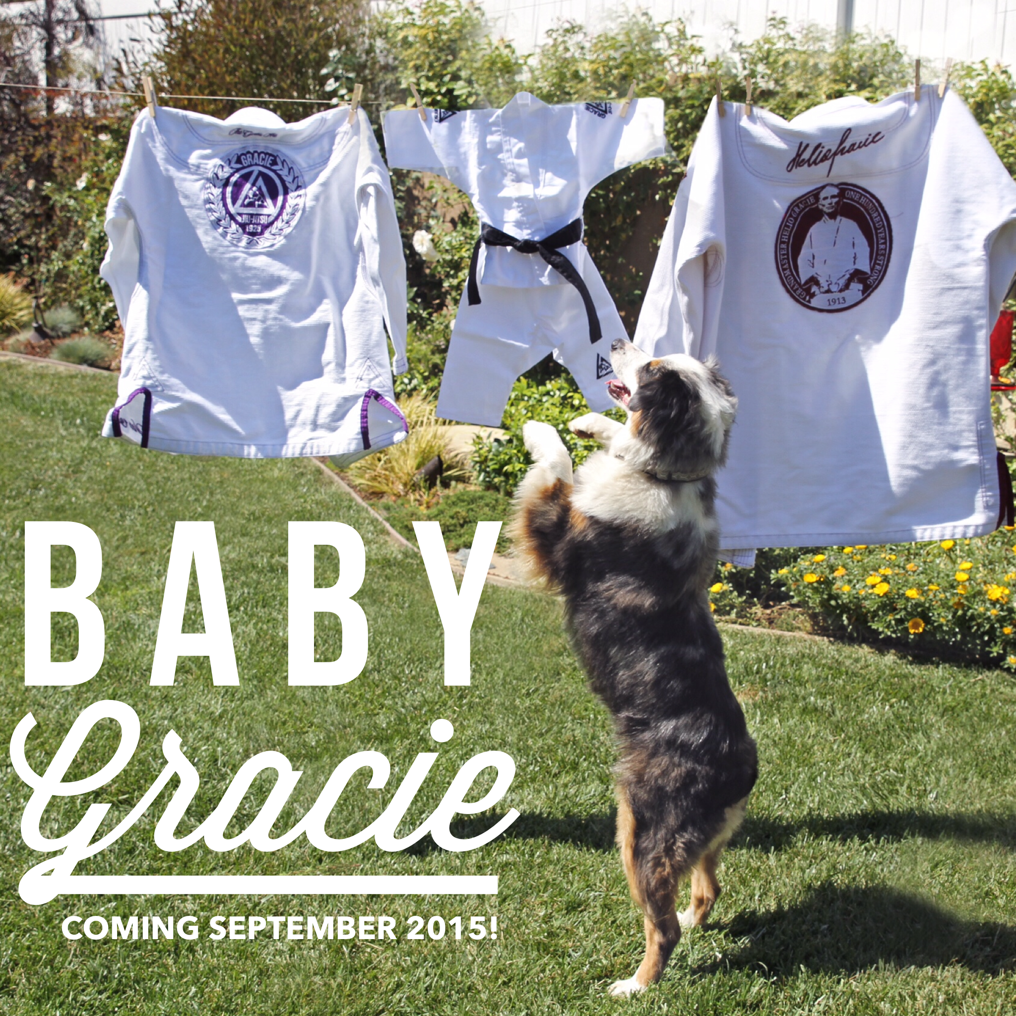 Baby Gracie is coming September, 2015!