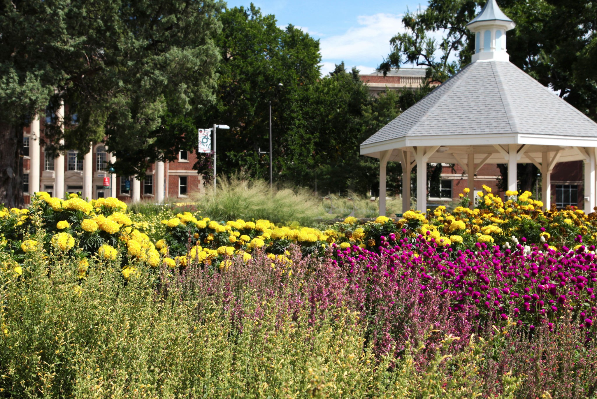 Colorado State University Flower Trial Garden