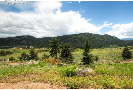 21 – 325 Mountain Plover