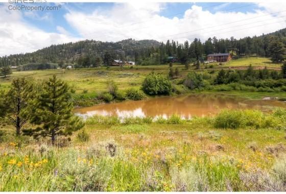 24 – 325 Mountain Plover