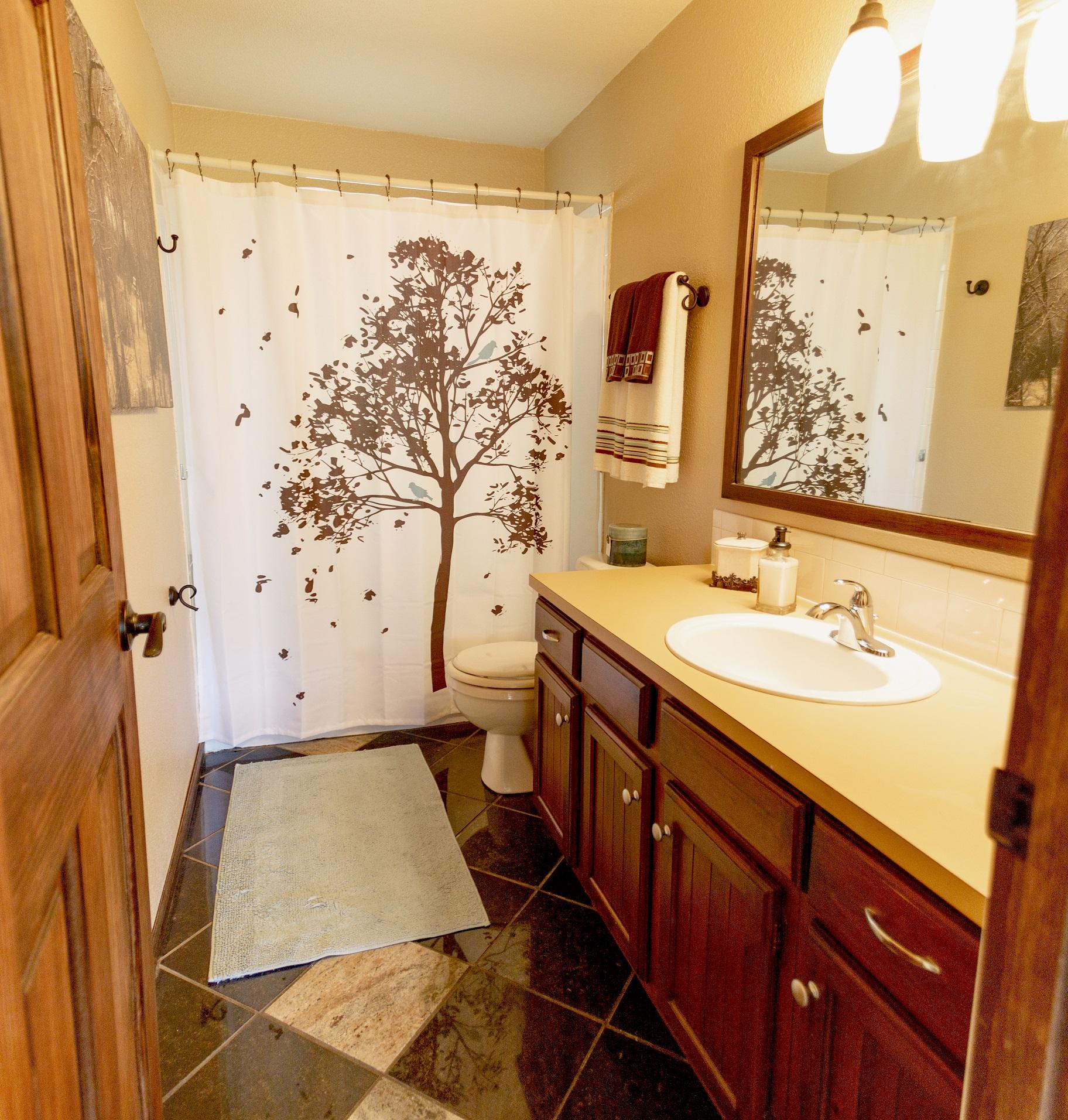c2 Bathroom #3 small