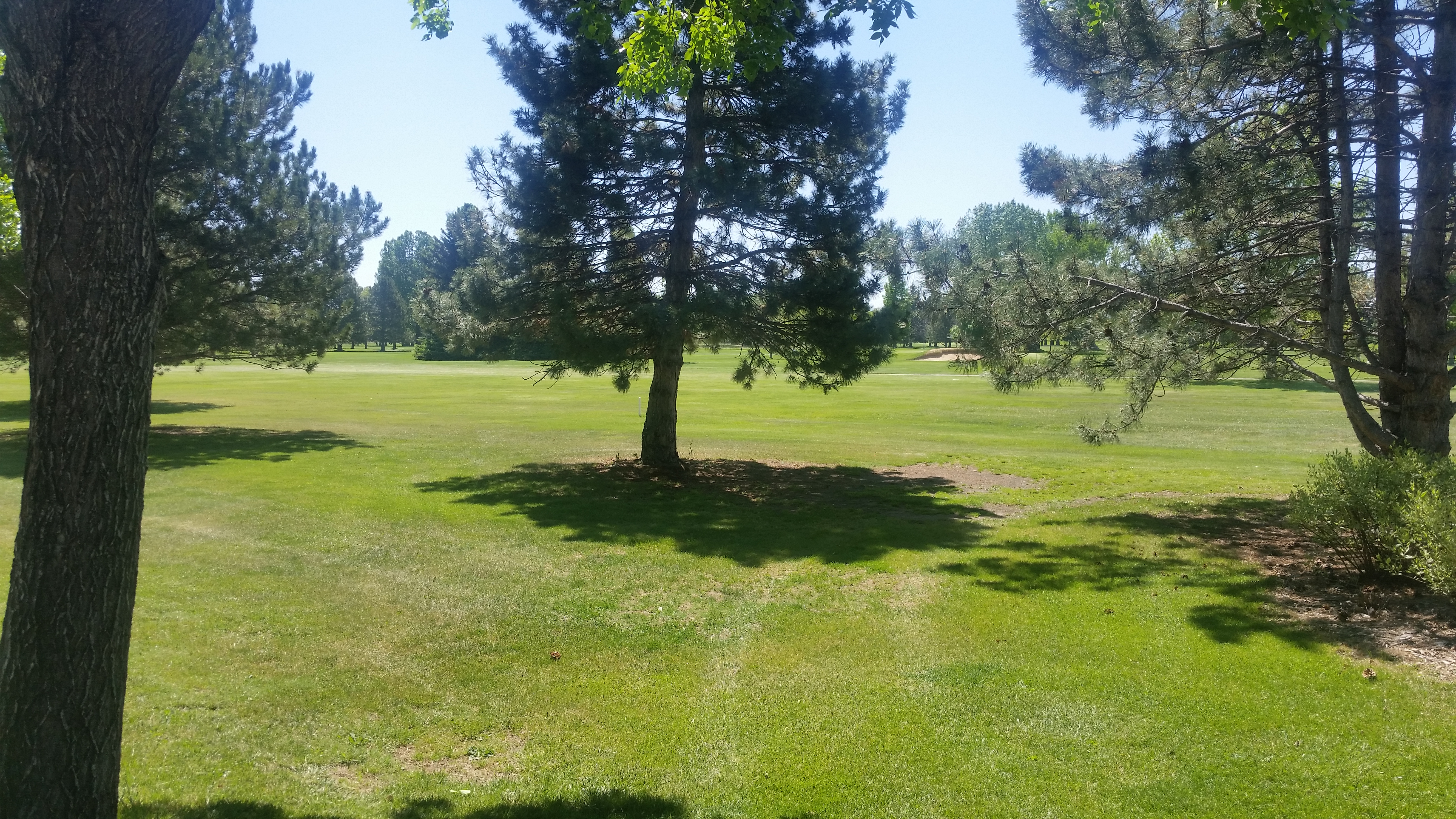 Collindale golf course