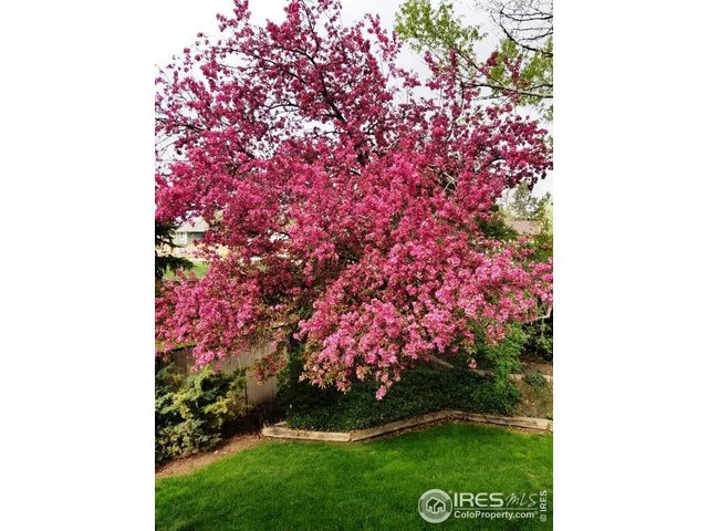 26-2265 Evergreen Pl