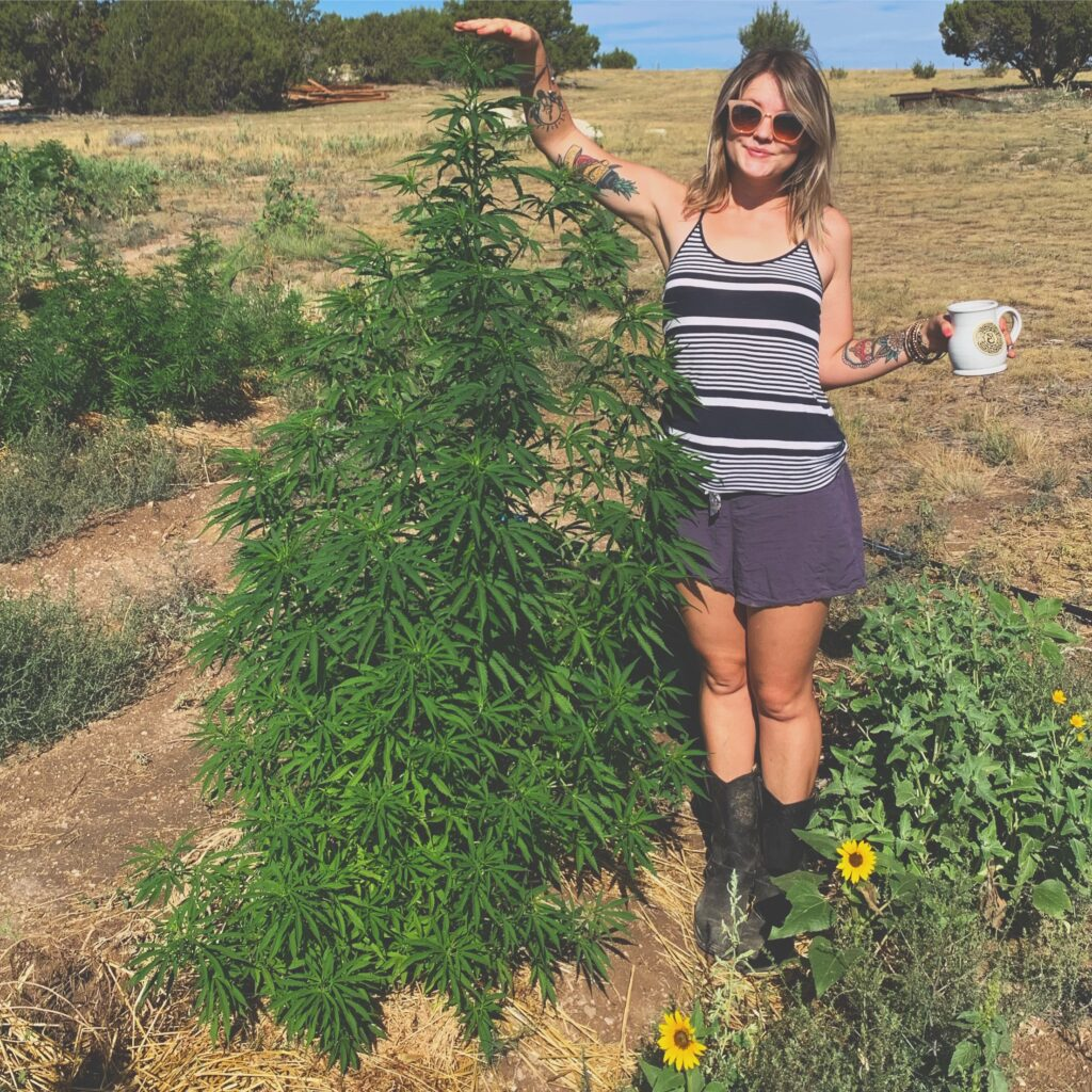 A blonde girl woman stands next to a tall hemp plant!