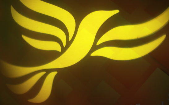 Whither the Withered? Do the LibDems have a future?
