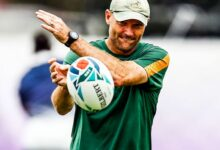 Photo of SA Springboks Appoint Nienaber As New Head Coach