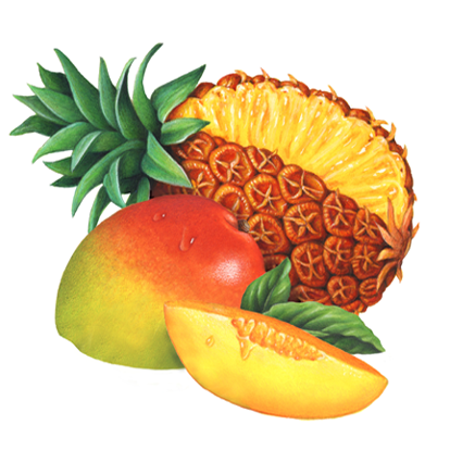 th-tropical fruit