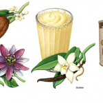 Botanical illustrations of cacao, vanilla and passion flower used on packaging for Shaklee.