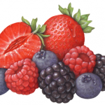 Berries, Strawberries, Blueberries, Blackberries and Raspberries