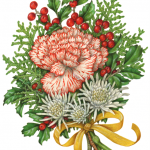 Christmas bouquet with candy cane carnation, white mums, holly and holly berries