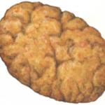 Cinnamon snap cookie.