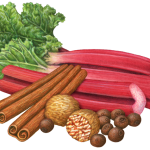 Rhubarb stalks with cinnamon sticks, nutmeg and allspice.