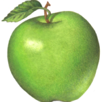One green Granny Smith apple with a leaf