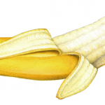Half peeled banana #2