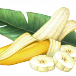 Half peeled banana with three banana slices and a banana leaf