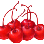 Six maraschino cherries with stems