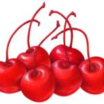 Six maraschino cherries with stems