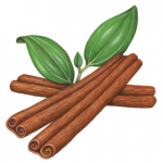 Three cinnamon sticks with leaves