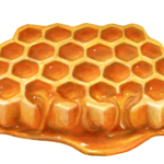 Honey comb with dripping honey