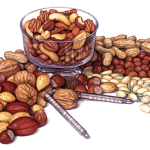 Assorted nuts still life with a glass bowl, nut cracker, walnuts. pecans, almonds, pistachios, hazelnuts, Brazil nuts and peanuts
