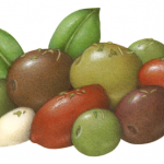 Mescolanza Italiano Olive Medley consisting of garlic, red and green Cerignola, green Castelvetrano, green California Sacilian, purple Gaeta and Greek black olives