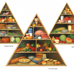 FDA food pyramid, phytofood pyramid, and California diet food pyramid.