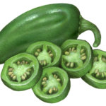 Whole jalapeno pepper with five cut slices