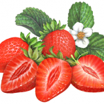 Two whole strawberries with three cut strawberry halves and leaves with a strawberry flower