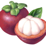 One whole mangosteen with a cut half mangosteen and a leaf.