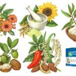 Illustrations of witch hazel, mint, sulfur, sunflower, oats, she butter, jojoba, rice, almonds, and jalapeno pepper.