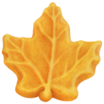 Maple sugar candy in the shape of a maple leaf.