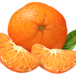 Mandarin orange, tangerine, or clementine with pealed segments.