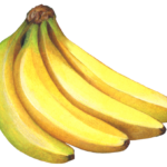 Four bananas
