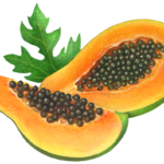 Two cut papaya slices with a papaya leaf.