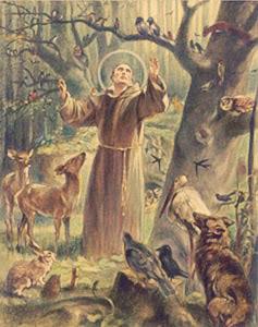 Saint Francis - humility