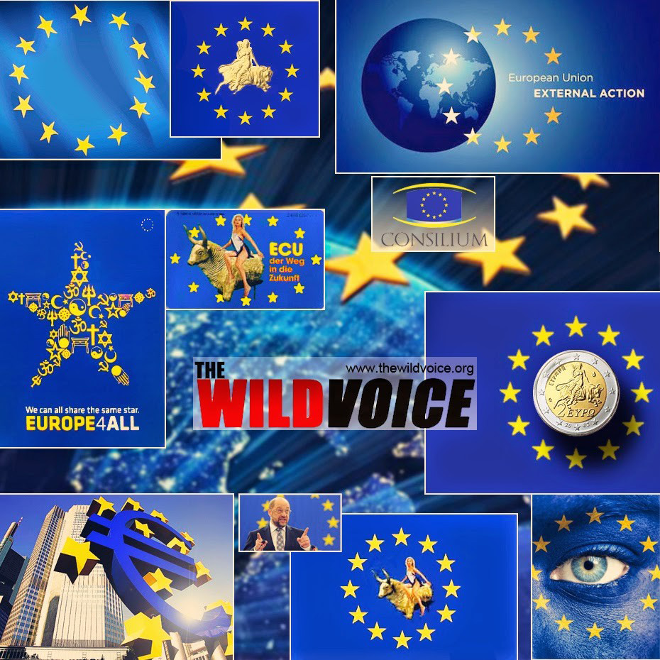 the wild voice - european union- blue