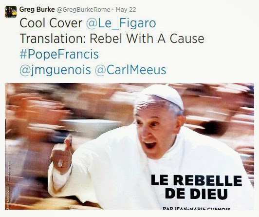 the wild voice pope francis the rebel of god