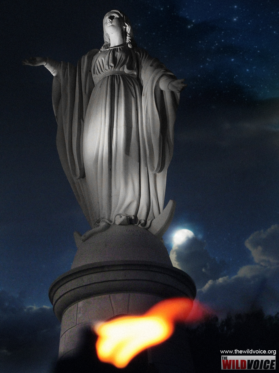 Maria Divine Mercy, Mary, Holy, Virgin, Mother, God, statue, night, moon, Immaculate, Conception
