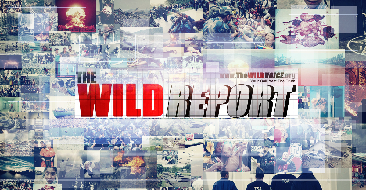 The WILD VOICE, WILD REPORT, Paul Joseph C, Maria Divine Mercy, End Times, News