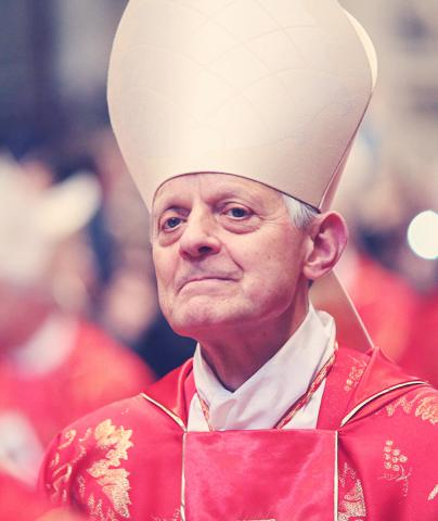 Cardinal, Donald, Wuerl, Raymond, Burke, blog, letter, Pope, Francis, False, Prophet, Wild, Voice, Maria Divine Mercy, Catholi, Church, schism, dissenters