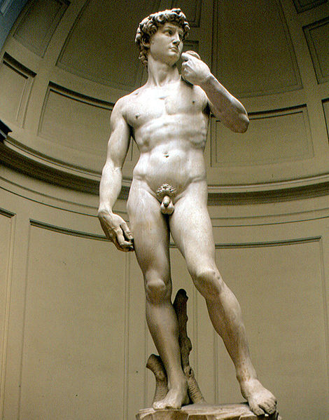 Florence_-_Michelangelos_-David-_(2929585347)